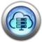 Silver and Blue Icon- virtual services.png